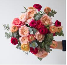 https://www.bergamotte.com/livraison-fleurs/valensole